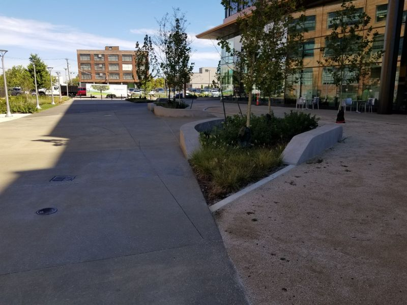 structural concrete around landscaping and decorative concrete on sidewalks