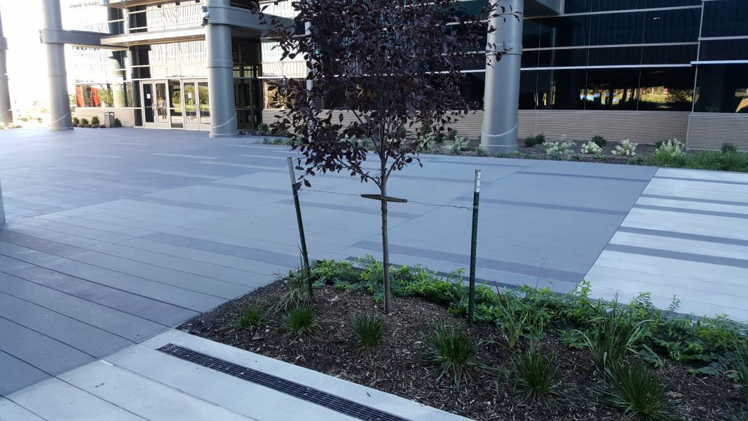 outdoor area in front of Garmin with nice landscaping and decorative concrete