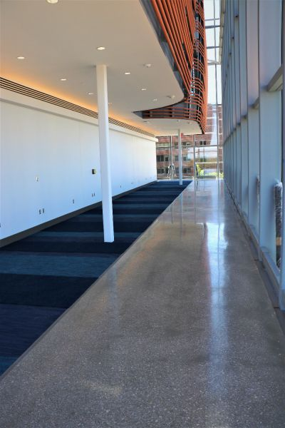 a hallway inside the KU Health Building featuring decorative concrete flooring and royal blue carpet